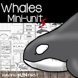 Whales: Non-Fiction Mini-Unit Jr.