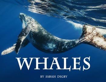 """""""Whales"""" – Original Book"""