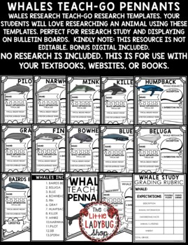 Whales Research Project & Rubric • Teach- Go Pennants™