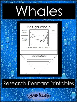 Whales Research Pennants
