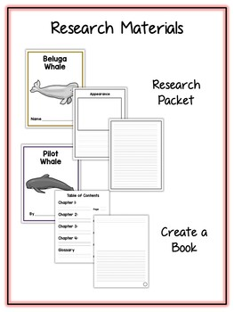 Whales Research Project - 14 Types, Vocab Cards, Packet, Book & More