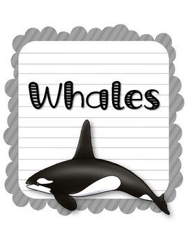 Whales. Research Template Packet. Apologia Zoology 2. Lesson 2