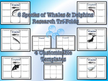 Whales and Dolphins Research Tri-Folds and Graphic Organizers