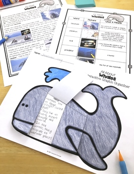 Whales and Sharks Compare and Contrast, Differentiated Reading Passages