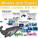 Whales and Sharks - Summer Learning Mini Unit