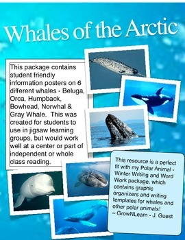 Whales of the Arctic