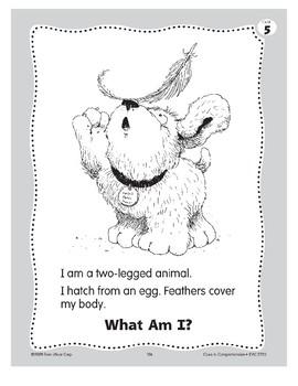 What Am I? A Bird