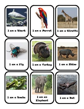 What Am I? Animal Cards