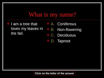 What Am I - Test Review PowerPoint