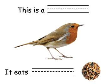 What Animals Eat