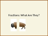 What Are Fractions?