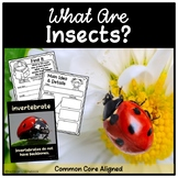 Insects Nonfiction Text