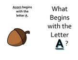 What Begins with the Letter A Mini Book