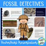 What Can Fossils Tell Us? PowerPoint Presentation (20 Sides)