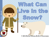 What Can Live in the Snow Emergent Reader BUNDLE