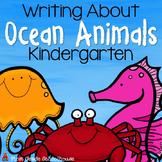 Writing About Ocean Animals Kindergarten