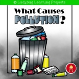 What Causes Pollution Emergent Reader