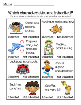 What Characteristics Are Inherited?  A Science Picture Activity for Heredity