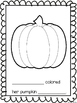 What Color is Your Pumpkin? – a free class book