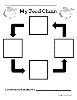 Food Chains:  What Comes Next?