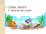 What Coral Needs to Survive