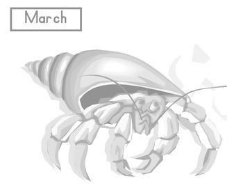 What Did Hermit Crab Add to His Shell?