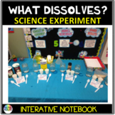 What Dissolves? A Science Experiment