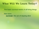 What Do All Living Things Need to Survive? PowerPoint