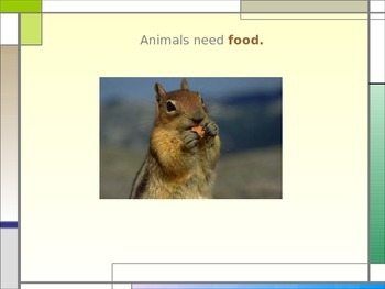 What Do Animals Need to Live and Grow? PowerPoint