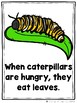 What Do Hungry Bugs Eat?  (An Emergent Readers and Teacher