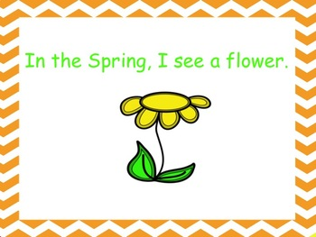 What Do I See in the Spring?