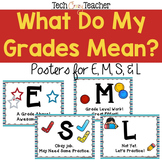What Do My Grades Mean? - E, M, S, L