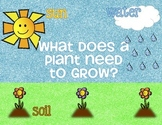 What Do Plants Need to Grow - Mini Poster and Worksheet