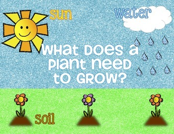 What Do Plants Need to Grow... by Jessica Barber | Teachers Pay ...
