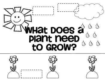 what do plants need to grow mini poster and worksheet by jessica barber. Black Bedroom Furniture Sets. Home Design Ideas