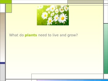 What Do Plants Need to Live and Grow? PowerPoint