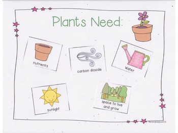 What Do Plants and Animals Need? {Aligns with NGSS K-LS1-1} | TpT