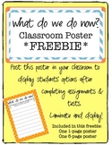 """""""What Do We Do Now?"""" Poster Freebie"""