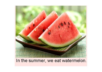 What Do We Do in the Summer? (Adapted Book with Core Vocabulary)