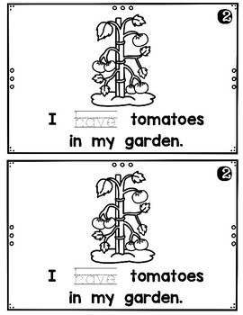 What Do You Have in Your Garden?  emergent reader
