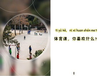 What Do You Like in PSPE Level one Mini book in Chinese