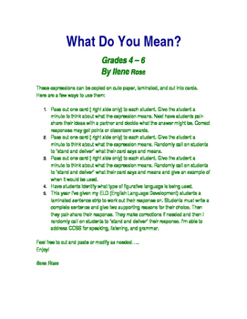 What Do You Mean? / Figurative Language