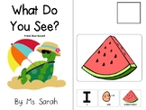 What Do You See? A Book on Summer