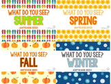 What Do You See?  Adapted Book Series: SEASONS
