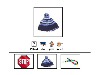 What Do You See? An Adapted Book of Picture Matching for Early Learners