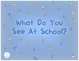What Do You See At School (interactive book, smash mat, pronoun cards)