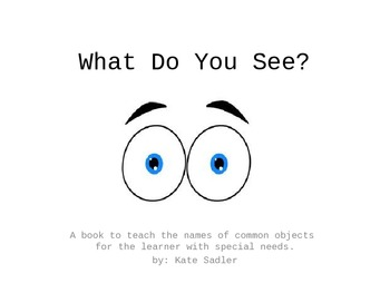 What Do You See? Teaching the names of  common objects