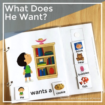 What Does He Want? - A Core Word Interactive Book