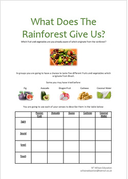 What Does The Rainforest Give Us?