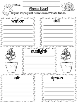 what does your garden grow mini unit plant life cycle by ms smarty pants. Black Bedroom Furniture Sets. Home Design Ideas